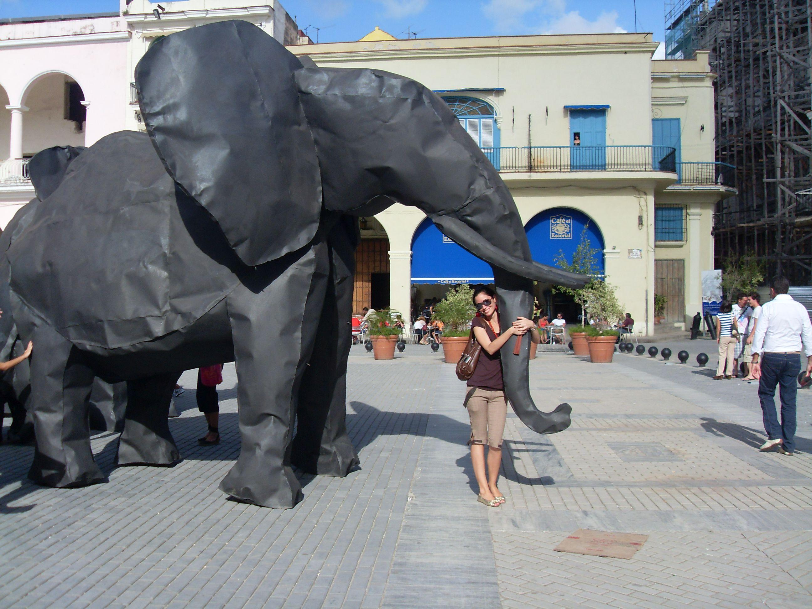 Elefanten auf der Biennale 2009