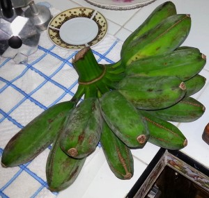 Chatinos: Bananenbündel