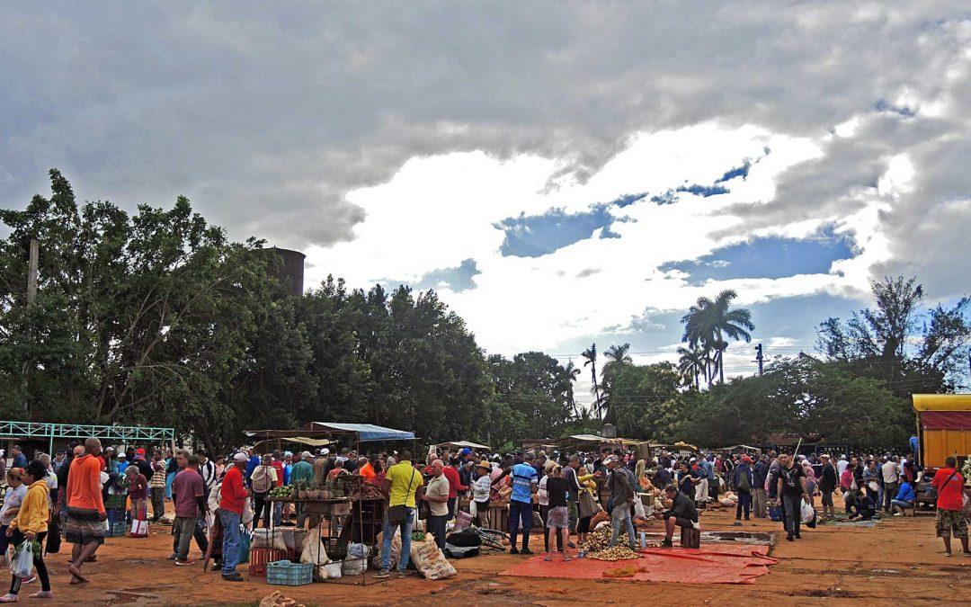 Bauernmärkte von Havanna: Bio-Essen einkaufen garantiert
