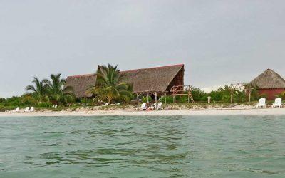 Kuba und Zika – aktuelle Warnungen in den Medien