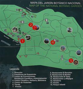 Kubanews: Meine 5 Highlights des Botanischen Gartens