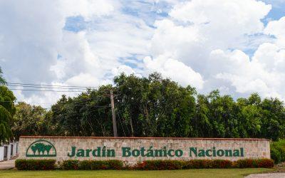 Botanischer Garten in Havanna