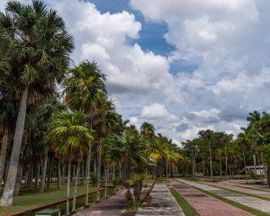 Kubanews: Eingangsbereich des botanischen Gartens