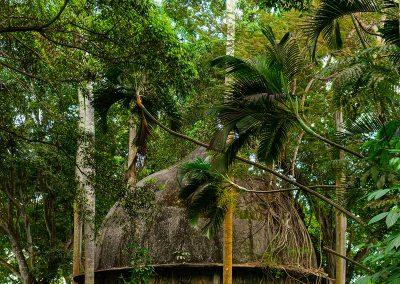 Kubanews: Vom Grün umschlungen - die Kuppel über der Tanzfläche.