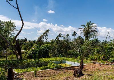 kubanews: Blick über das Schwimmbecken in den Garten