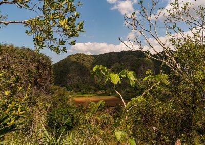 Kubanews: Blick ins Tal ist zwischendurch durch Vegetation gestört.