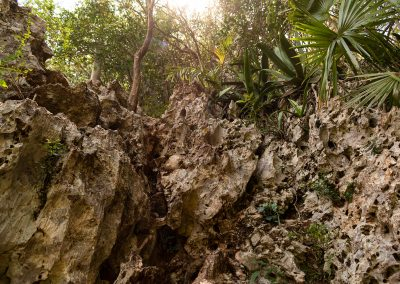 Kubanews: Die erste Kletterstrecke - wer hier scheitert, kann umkehren.